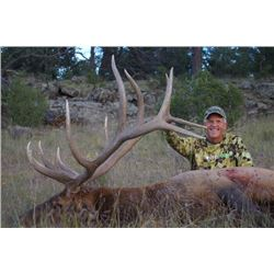 5-day New Mexico Trophy Rocky Mountain Elk Hunt for One Hunter