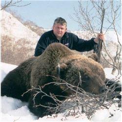 10-day Kamchatka Brown Bear Hunt for One Hunter