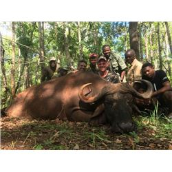 10-day Tanzania Cape Buffalo Hunt for One Hunter and One Observer
