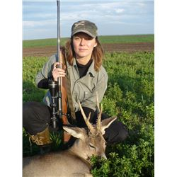 5-day European Roe Deer Hunt and Site Seeing Trip in Serbia for One Hunter and One Observer