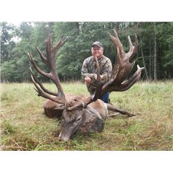 5-day Austria Red Deer and Fallow Deer Hunt for One Hunter and One Observer