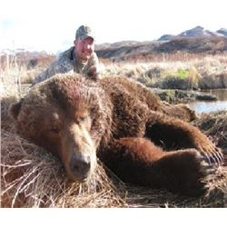 9-day Alaska Coastal Brown Bear Hunt for One Hunter and One Observer