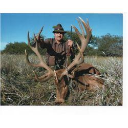 7-day Argentina Big Game Safari for Four Hunters