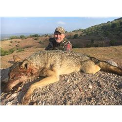 5-day Macedonia Wolf Hunt for Five Hunters