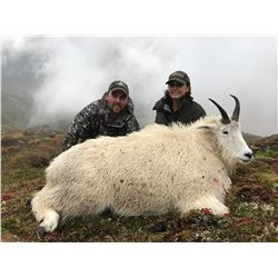 7-day Alaska Mountain Goat Hunt for One Hunter