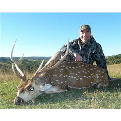 5-day Australia Moluccan Rusa and Axis Deer Hunt for One Hunter and One Observer
