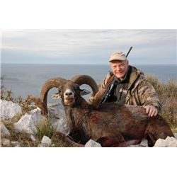 5-day Croatia European Mouflon Hunt for One Hunter and One Observer