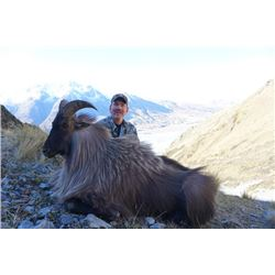 5-day New Zealand Himalayan Tahr Hunt for One Hunter and One Observer