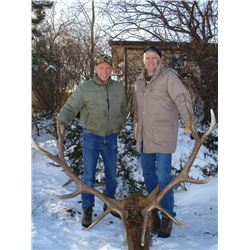 5-day, Montana Rocky Mountain Elk Hunt for One Hunter and Observer