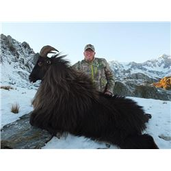 5-day New Zealand Free-ranging Tahr Hunt for Two Hunters