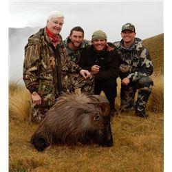 5-day New Zealand Free Ranging Tahr Hunt for Two Hunters