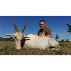 7-day/8-night South Africa Plains Game Hunt for One Hunter and One Observer