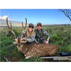 2-day Hawaii Axis Deer Hunt for Two Hunters