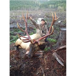 7-day British Columbia Vancouver Island Roosevelt Elk Hunt for One Hunter
