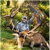 Image 2 : 7-day New Zealand Gold-Medal Red Stag and Trophy Fallow Deer Hunt for Two Hunters and Two Observers