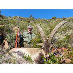 5-day Spain Ronda Ibex Hunt for One Hunter and One Observer