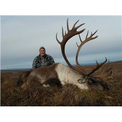 6-day Alaskan Barren Ground Caribou Hunt for One Hunter
