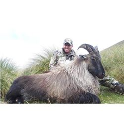 5-day New Zealand Tahr Hunt for Two Hunters and Two Observers