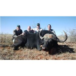 5-day South Africa Cape Buffalo Hunt for One Hunter and One Observer