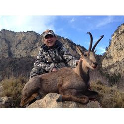 5-day Spain Pyrenean Chamois or Roe Deer Hunt for One Hunter and One Observer