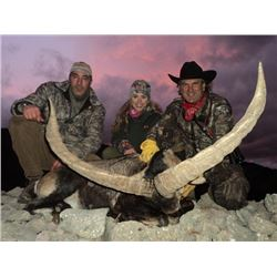 6-day Spain Beceite Ibex Hunt for Two Hunters