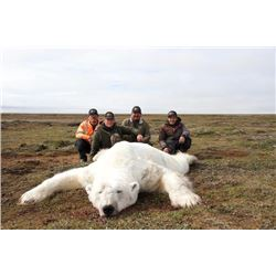 10-day CITES Polar Bear and Atlantic Walrus combination hunt in Nunavut Territory, Canada for one hu