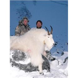 9-Day British Columbia Winter Mountain Goat Hunt for One Hunter