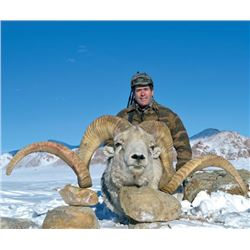 7-day Tajikistan Marco Polo Argali Hunt for One Hunter