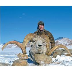 7-day Tajikistan Marco Polo Argali Hunt for One Hunter