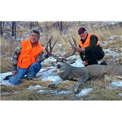 6-day Montana Trophy Mule Deer Hunt for One Hunter