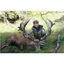 5-day New Zealand Red Deer Hunt up to 390 SCI for One Hunter and One Observer