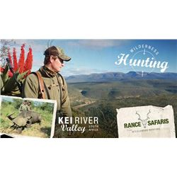 7 Day Cape Buffalo and Plains Game Hunt for One Hunter and One Observer