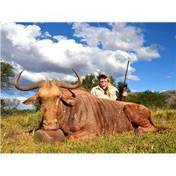 TAM SAFARIS 5-Day, 1:1 Trophy Golden Wildebeest Hunt for 1 Hunter and 1 Non-Hunter