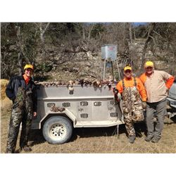 JOSHUA CREEK RANCH 3-Day Upland Bird Hunt in Texas for 2 Hunters and 2 Non-Hunters