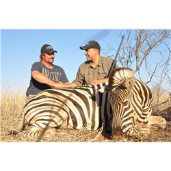 CAPE TO CAIRO SAFARIS 2 Hartman Zebras and 2 Burchell Zebras for 2 Hunters in Namibia