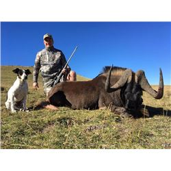 SOUTHERN CROSS SAFARIS 10 Day trip for 1 or 2 hunters for (7) animals in Eastern Cape South Africa