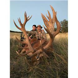 CATENA SAFARIS 5-Day Blackbuck, Ram and Wild Boar Hunt for 3 Hunters in La Pampa, Argentina
