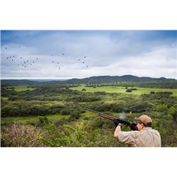 ARGENTINA PUELO EXPEDITIONS 3-Day Dove Hunt for 3 Hunters in Argentina