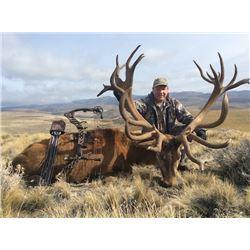 ALGAR SAFARIS Argentina Big Game hunt for 1 Hunter for 1 Red Stag up to 320 SCI