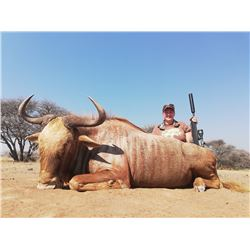 SADAKA SAFARIS 5-Day 2:1 Hunt for 2 Hunters for Sable, Golden Wildebeest, Kudu and Nyala in Limpopo