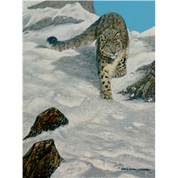 """CALL OF AFRICA/NATIVE VISIONS """"Queen of the Mountain"""" by 2019 HSCF Artist of the Year Suzie Seery-Le"""