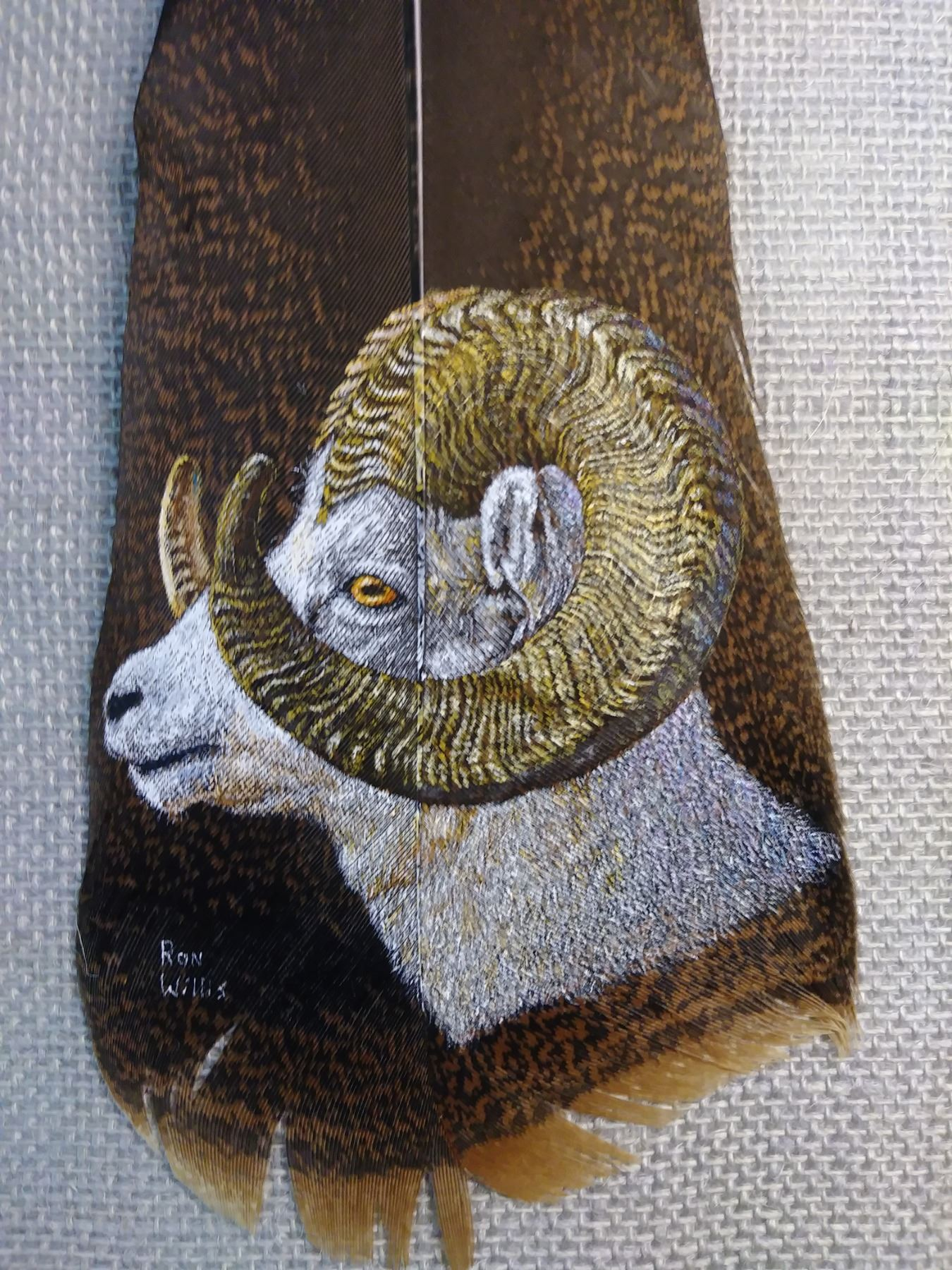 """""""WHAT A DALL"""" FEATHER ART OF A DALL'S SHEEP"""