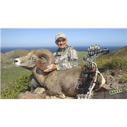 CARMEN ISLAND, MEXICO, DESERT BIGHORN SHEEP PERMIT