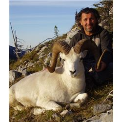 10 - DAY 1X1 FANNIN OR DALL'S SHEEP HUNT IN THE YUKON