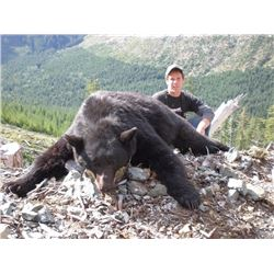 6 - DAY BLACK BEAR HUNT IN BRITISH COLUMBIA FOR 1 HUNTER AND 1 NON-HUNTER