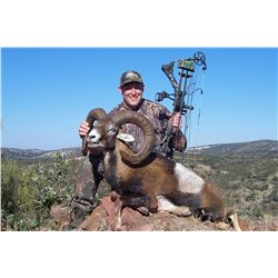 4 - DAY MOUFLON HUNT FOR 2 HUNTERS (Trophy fees included for 2 mouflon)