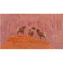 "24X36 Original Acylic Painting ""Sheep on a Rock"" By Kelley Coburn"