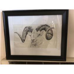 """Dall Sheep""-pencil sketch by Nicole Reynolds"