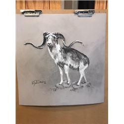 """Sheep"" framed print by Edgar Sotelo"