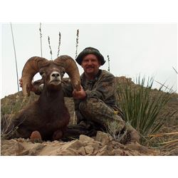 6-DAY NELSONI DESERT SHEEP PERMIT IN WEST TEXAS Go With Bo Booking and Guide Service